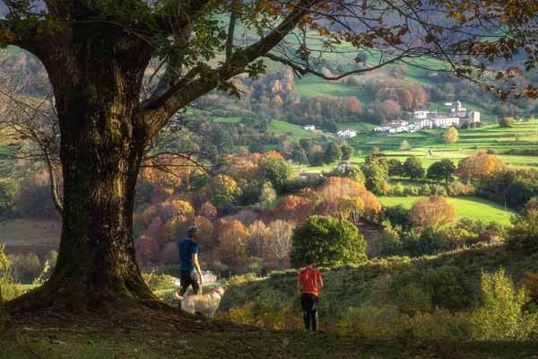 Observatorio Turístico de Navarra